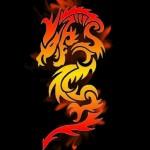 Огненное шоу (Fire show) - Wanderers
