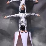Артисты цирка - Tiger Show Moscow