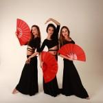 Танцевальные шоу - Музыкально-танцевальный проект TRIOLIA
