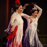 Танцевальные шоу - Фламенко-шоу