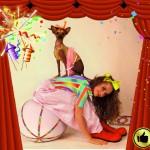 Артисты. Шоу с животными