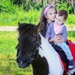 Шоу с животными - Пони на праздник