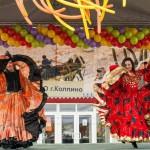 Артисты. Цыганский коллектив