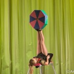 Артисты цирка - Артистка оригинальных жанров