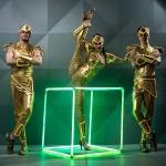 Артисты цирка - Свето-цирковое шоу